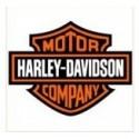 Harley Davidson Xenon